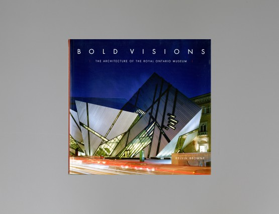 Bold Visions_Cover_Grey background